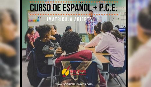 Cursos de español y selectividad