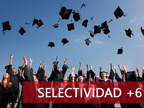 Cursos de selectividad y español para extranjeros - Selectividad +6